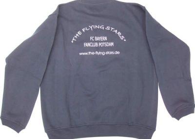 Sweatshirt Blau Rückseite